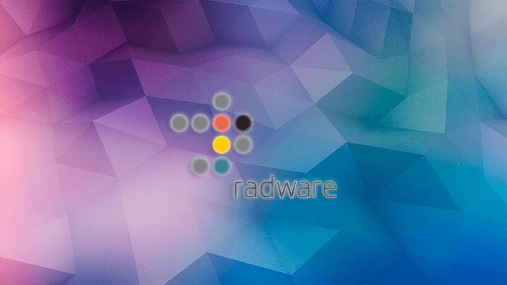 Добавление нового клиента под DDoS-защиту Radware