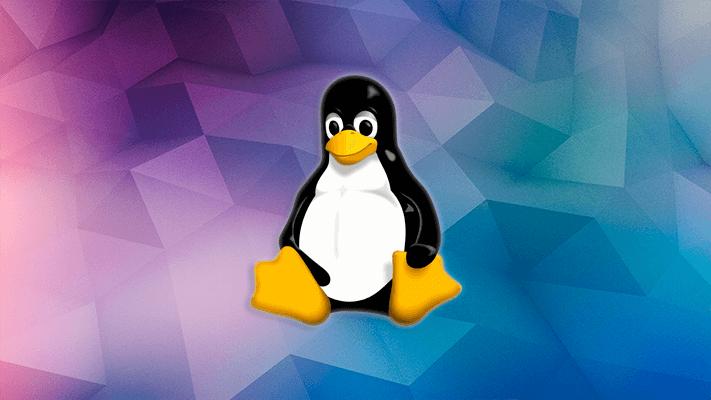 Определяем аппаратную конфигурацию сервера на Linux